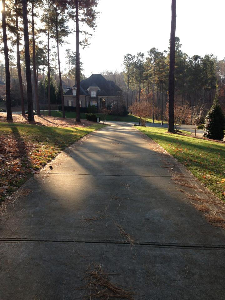 Driveway Cleaning Before